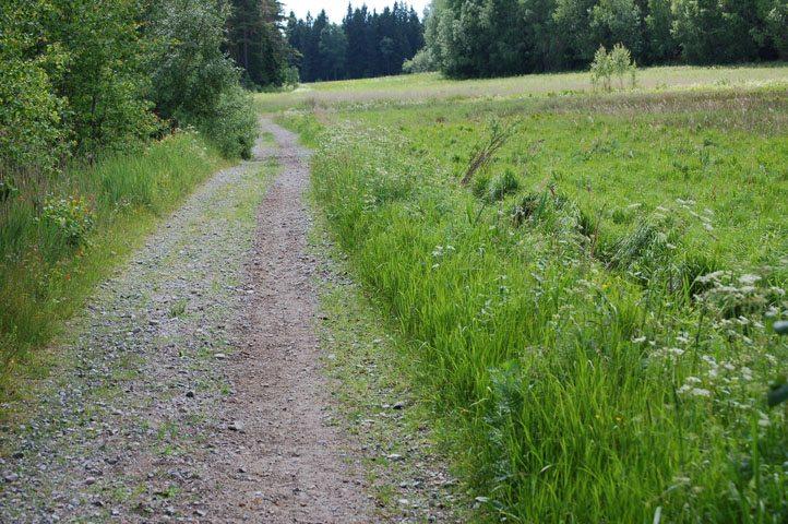 ryttare och hästar på vägen