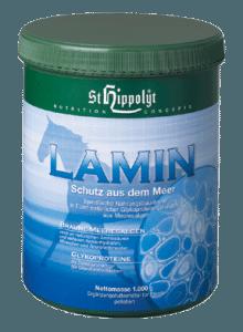 Lamin från St Hippolyt vid akut och kronisk vävnadsinflammation