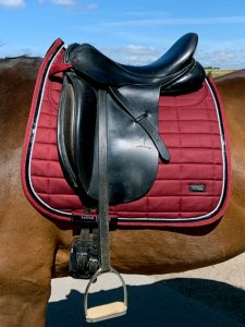 MmBrick Silverline Schabrak Mink Horse