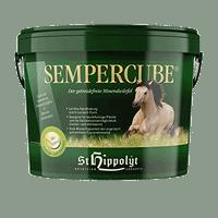 Semper Cube St Hippolyt