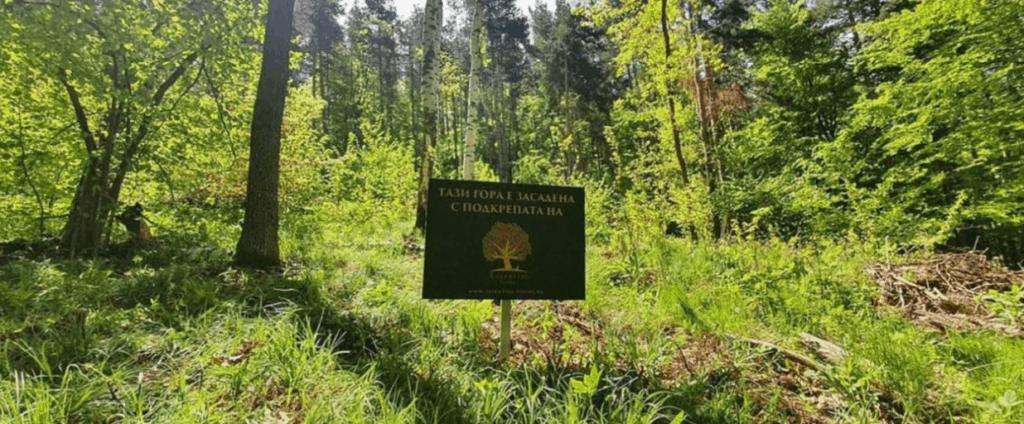 Essential Foods plantera ett träd